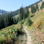 Cliff Lake Trail #100 Photo by Michael Bernhardt